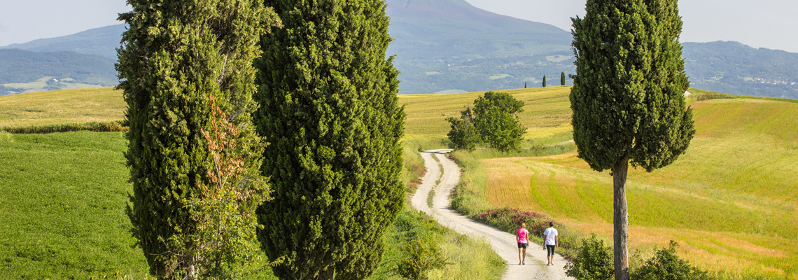 tuscany-country-lane